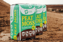 Peat moss potting soil