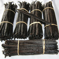Vanilla Beans For Sale