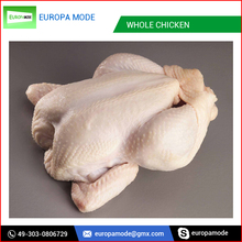 Premium Vacuum Packed Brazilian Frozen Whole Chicken Price