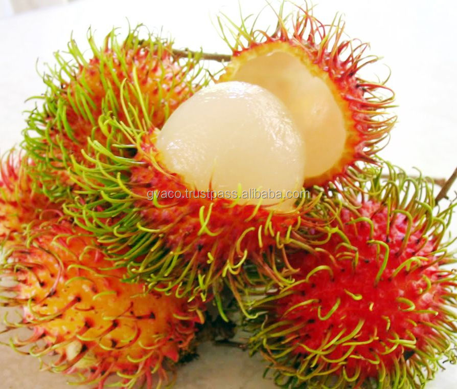 FRESH RAMBUTAN EXPORTER - HIGH QUALITY - BEST PRICE