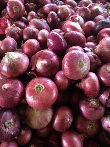 Bulk Supply Of Red Onion