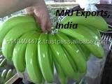 Cavendish Banana Variety and Common Cultivation Type fresh green cavendish bananas
