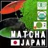 Variety Japanese matcha green tea photo and sencha gyokuro