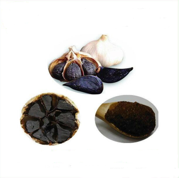 Honson Ingredient: Natural Extract Powder 4:1 Black Garlic Polyphenols
