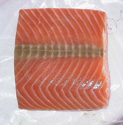 Frozen Chum Salmon Fish