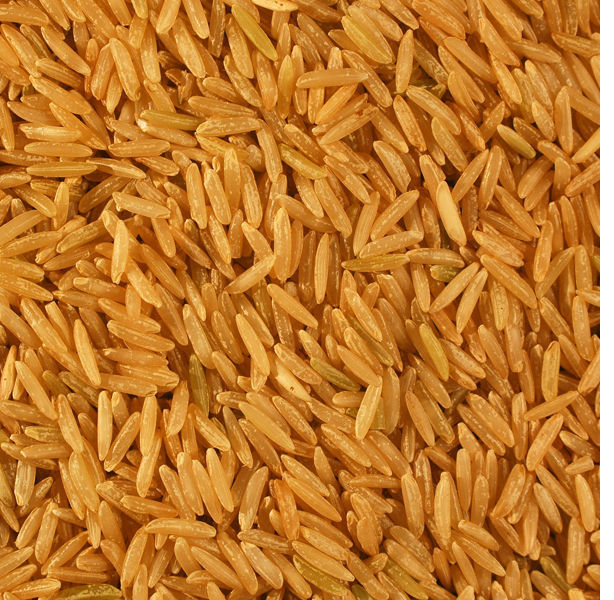 Paddy Basmati Rice