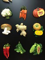 Vegetable magnet