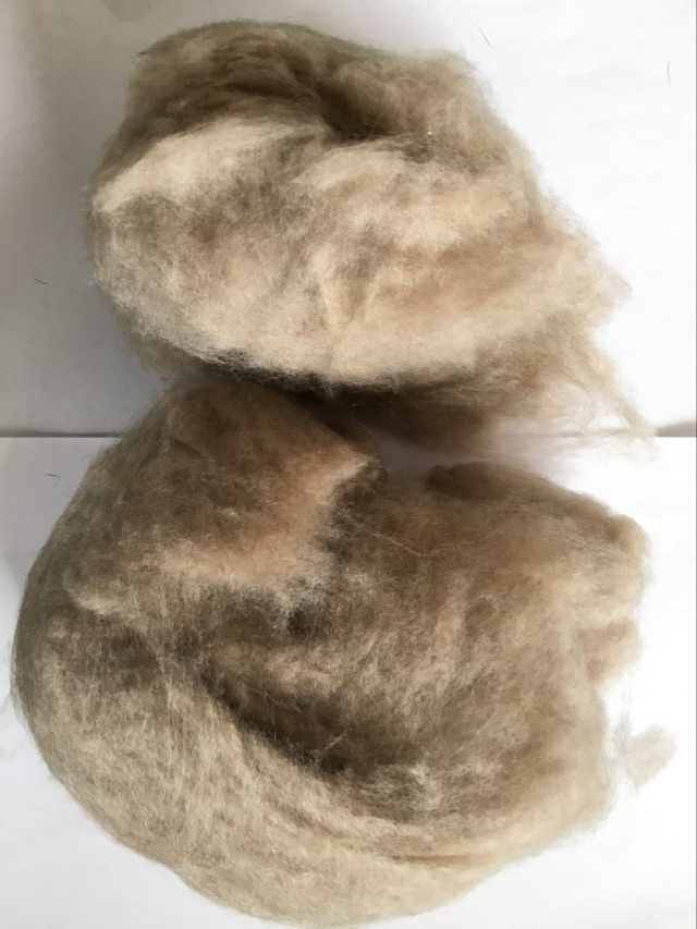 Dark brown Dehaired Cashmere fiber
