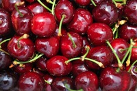 Bulk Red Cherry Shipments From Morocco - Cherries - No Import Tariffs to EU/US/Others