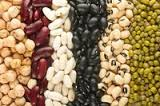WHITE KIDNEY BEANS RED KIDNEY BEANS RED LENTILS RICE MUNG BEANS CHICKPEAS ORGANIC SOYBEAN FROM