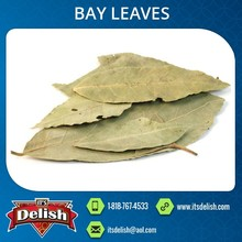 Naturally Dried Spice Bay Leaves Available at Amazing Market Price