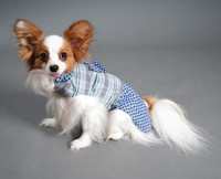 Wholesale Pet Clothing Dogs
