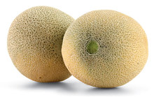Cantaloupe Melons - Bulk Shipping From Morocco - Low/No Import Tariffs To EU/US/Others
