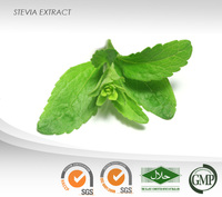 Stevia Extract Powder : 80% Stevioside :Natural non caloric sweetener, 300 times sweeter than sucrose