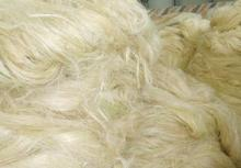 Quality Sisal Fibre / Sisal Hemp / Natural UG Grade. BEST PRICE