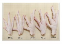 HALAL CLEAN GRADE A CHICKEN FEET / FROZEN CHICKEN PAWS BRAZIL