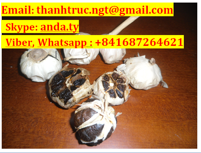 (VIBER, WHATSAPP: +841687264621) SUPPLYING BLACK GARLIC GOOD FOR HEALTHY FROM VIETNAM