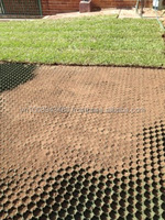 Grass paver turf cell turf grass for packing lot