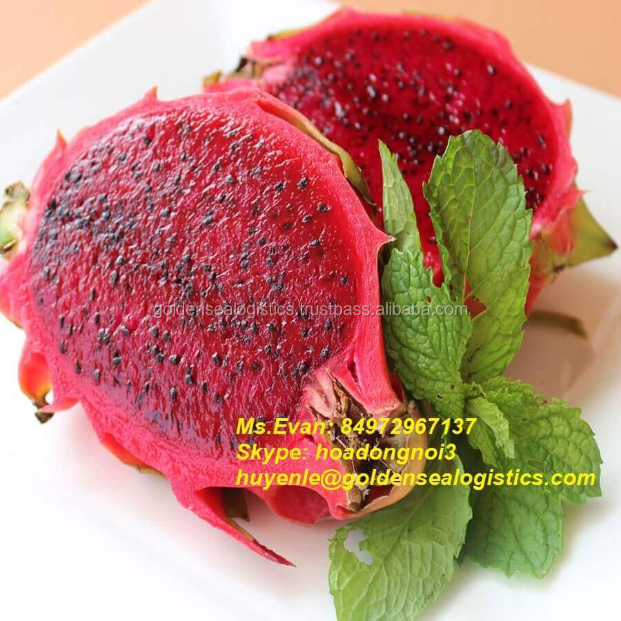 Fresh Red Dragon Fruit good price for NOW