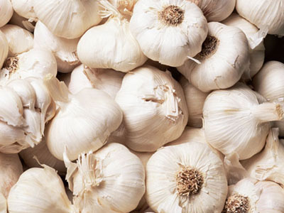 Fresh natural pure white garlic