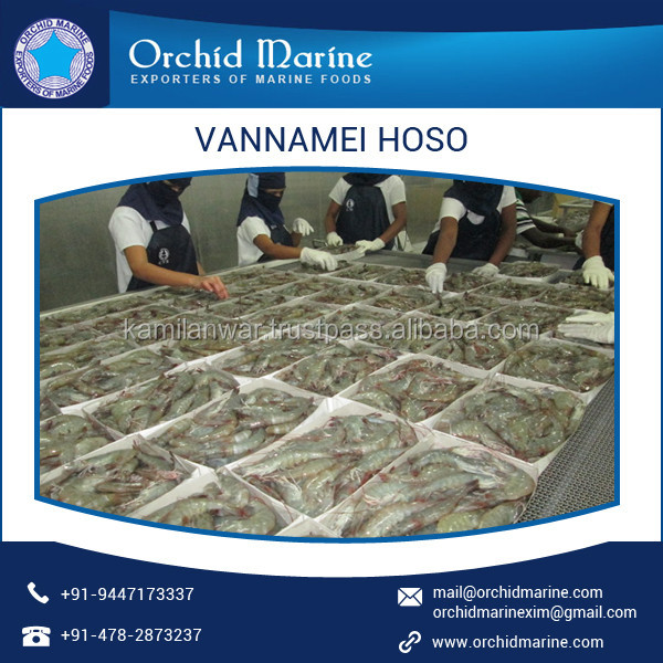 Low Cost Tasty/ Organic/ Cleaned Vannamei White Shrimp Available for Bulk Supply