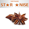/product-detail/star-anise-a-spice-tree-planted-in-mountain-area-50028797817.html