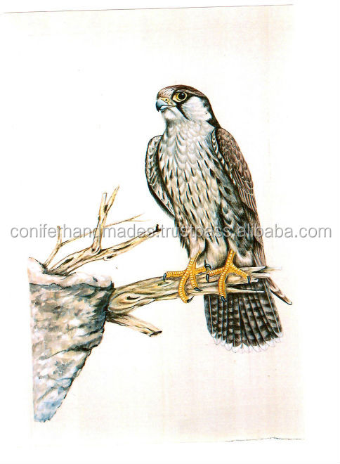 custom printed falcon theme silk paintings for home decorations, interior designers, interior decorators,