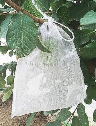 *Two-Side Rope(convenient to tip)*Fruit Bagging/PE 45 mesh(1200 mesh) Grow Bag/ Non-consumable Bagging Fruit and Vegetable / Av