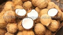 Good Quality Matured coconut exports to South Korea