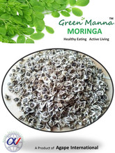 wholesale moringa seeds suppliers from india