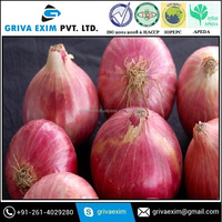 New Crop Fresh Red Onion Prices in India Exporters