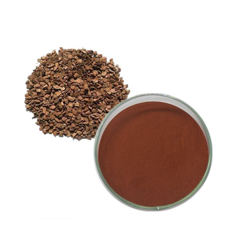 95% Natural French Pine Bark Extract Powder