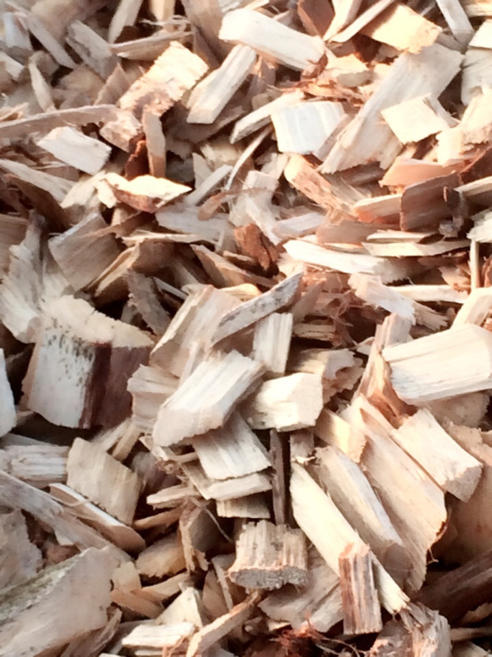 WOOD CHIPS in Vietnam Fuel for Biomass User