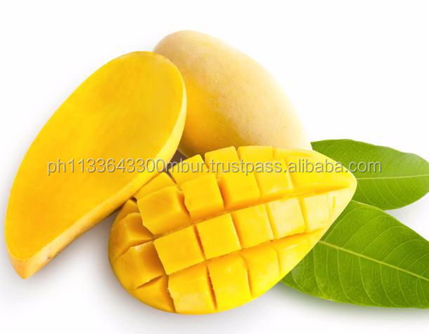 Supply Frozen Durian/ Passion Fruit/ Jackfruit/ Mango/ Avocado/ Dragon Fruit