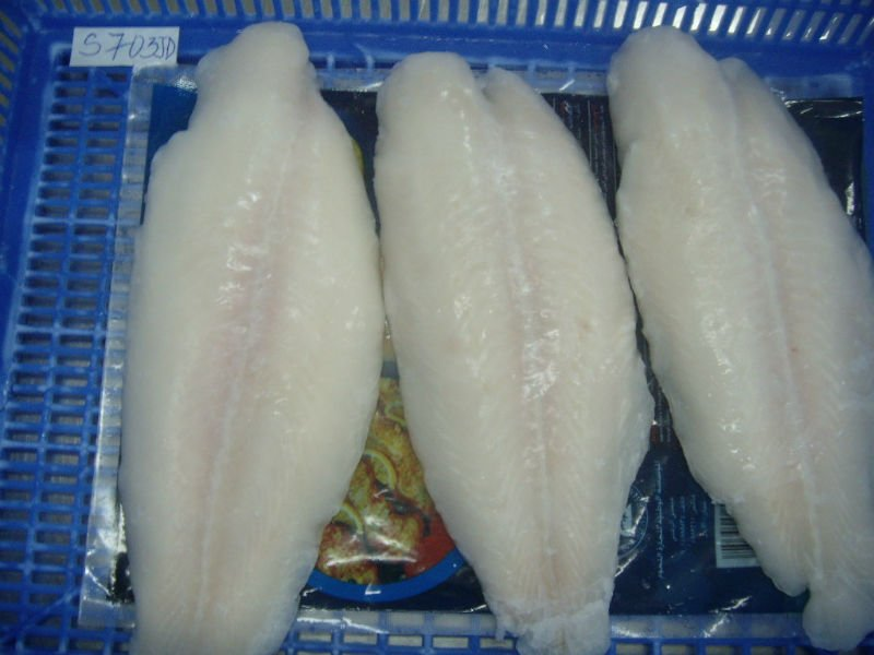 Seafood, Fish, Frozen Seafood, Frozen Fish, Fishing, Basa fish, Pangasius fish