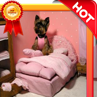 Dog house, dog bed very cheap and comfortable
