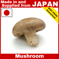 High quality and Various fake mushroom Japanese Shiitake Mushroom at competitive prices , Eryngii , Nameko also available