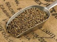 Quality Hemp Seeds for sale