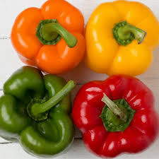 Thai supplier Capsicum / fresh young capsicum