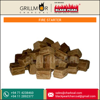 Most Selling Charcoal Fire Starter Supplier/ Exporter/ Manufacturer
