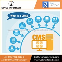 CMS Based Website Development- Web Developers India, Ecommerce Web Development