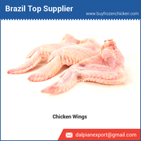 Wholesale Halal Frozen Chicken Wings from Brazil at Best Price