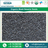 2016 New Variety Superior Quality Organic Black Sesame Seeds