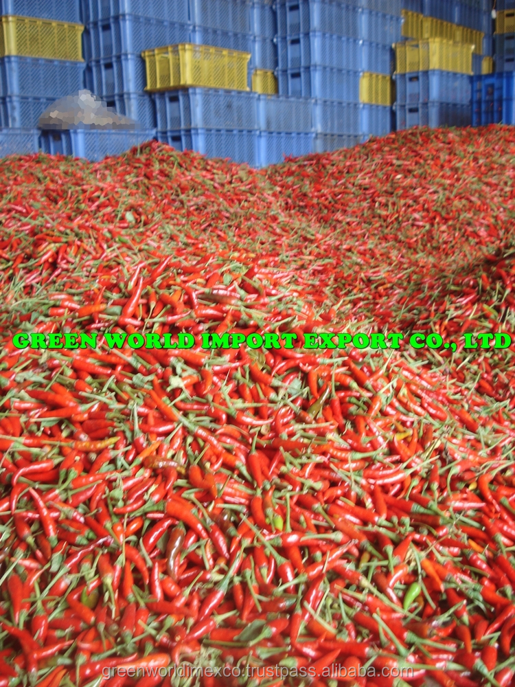 Frozen Red Chili with Premium Quality, Competitive Price.