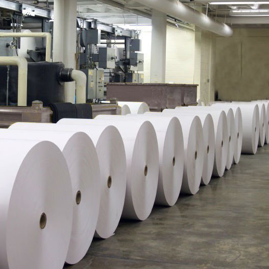 Giant Thermal Paper Rolls - $0 Deposit, 30 Days to Pay***
