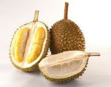 100% Cheap Fresh Durians For Export