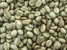 ARABICA COFFEE,ROBUSTA COFFE,ROASTED COFFEE BEANS, COCOA