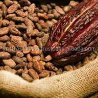 Contact Us For Cacao Bean Viber