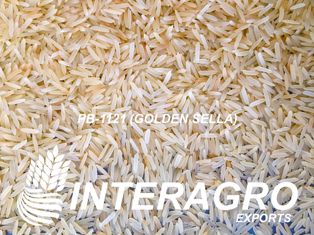 PUSA BASMATI 1121 GOLDEN SELLA