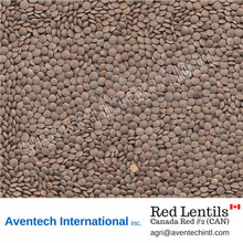 Red Lentils - Canada Whole Red Crimson Lentils #2 (CAN)